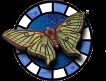 luna-moth-logo.png